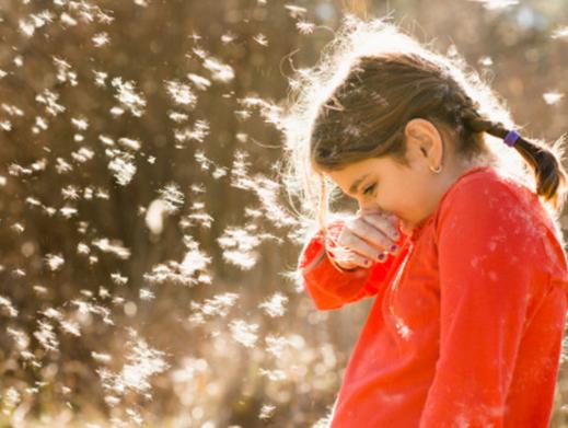 Llegó la primavera: ¿Renitis alérgica o resfrío?